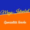 Mega Istanbul  logo