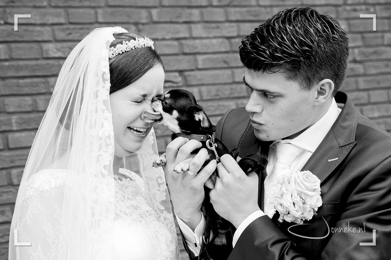 bruid&bruidegom2015-08-28_13-50-44-2