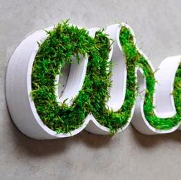 photo de l'offre Logo Végétal