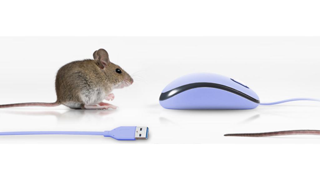 Poznáváme kouzlo pravého tlačítka myši