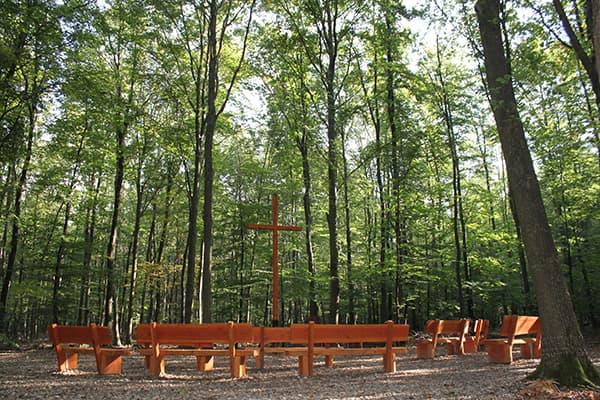 Andachtsplatz im FriedWald Meroder Wald