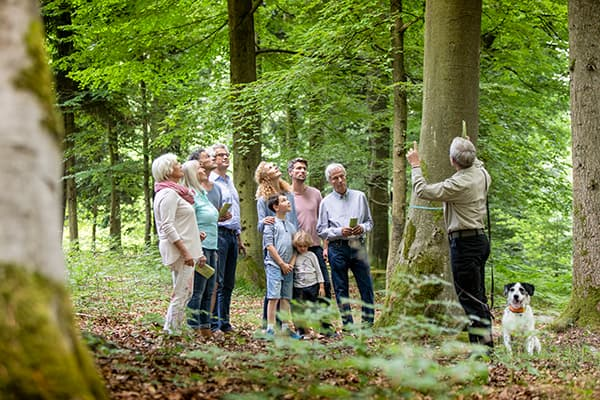 Während einer Waldführung erläutert ein Förster das FriedWald-Konzept