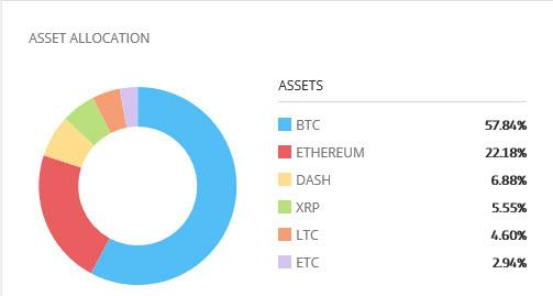 Trading Cryptocurrencies with eToro, the World's Largest Social Broker 4 (eToro cryptofund allocation)