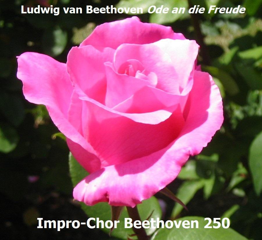 Improkuoro Beethoven 250 - harjoitus II