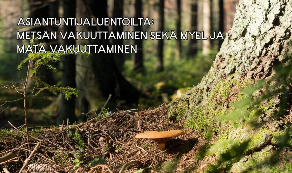 Asiantuntijaluentoilta: Metsän vakuuttaminen sekä Myel ja MaTa vakuuttaminen