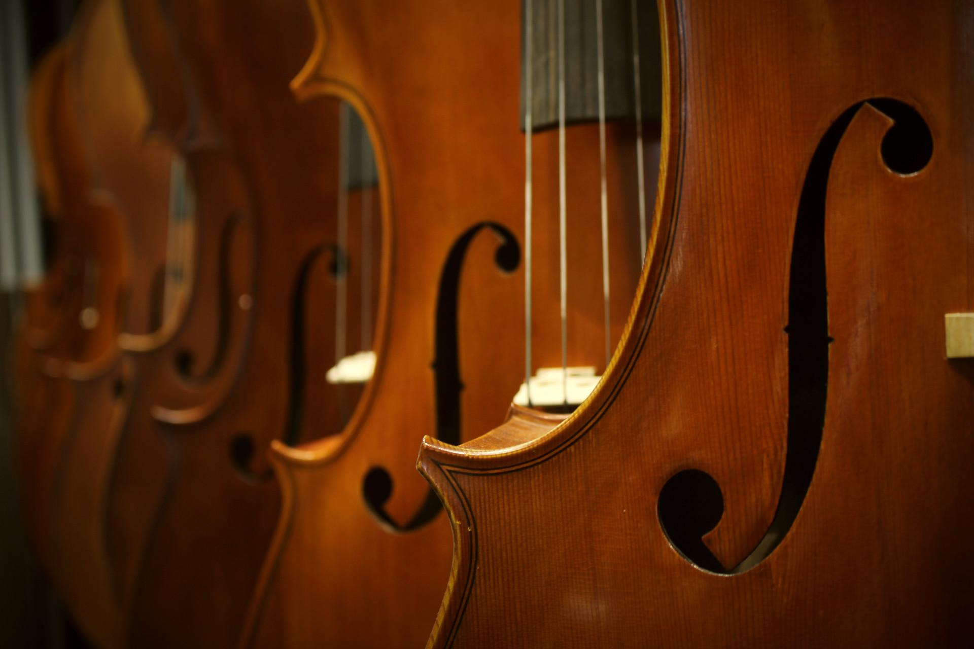 TAPAHTUMA PERUTTU: Valkeakosken musiikkiopiston Kamarijouset