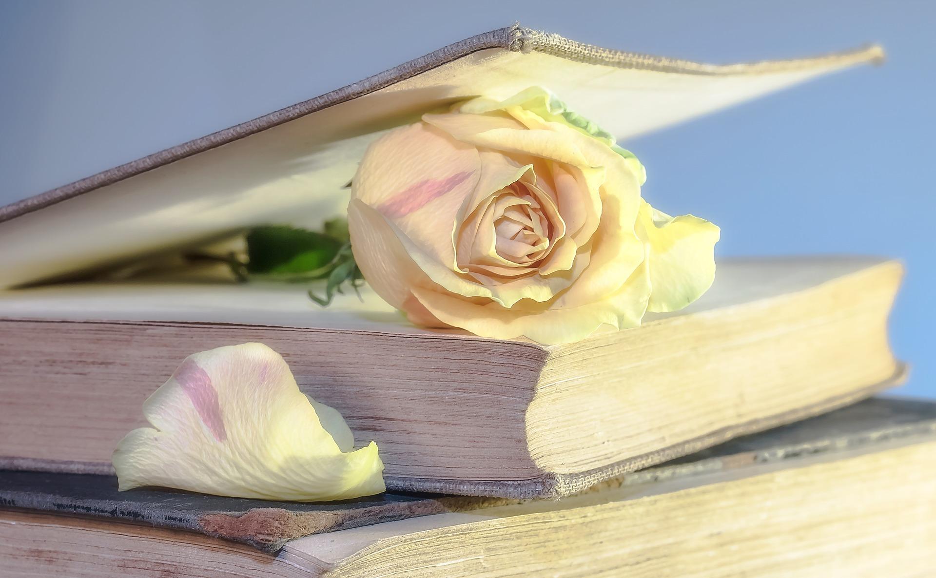 Eläkeläisten runopiiri