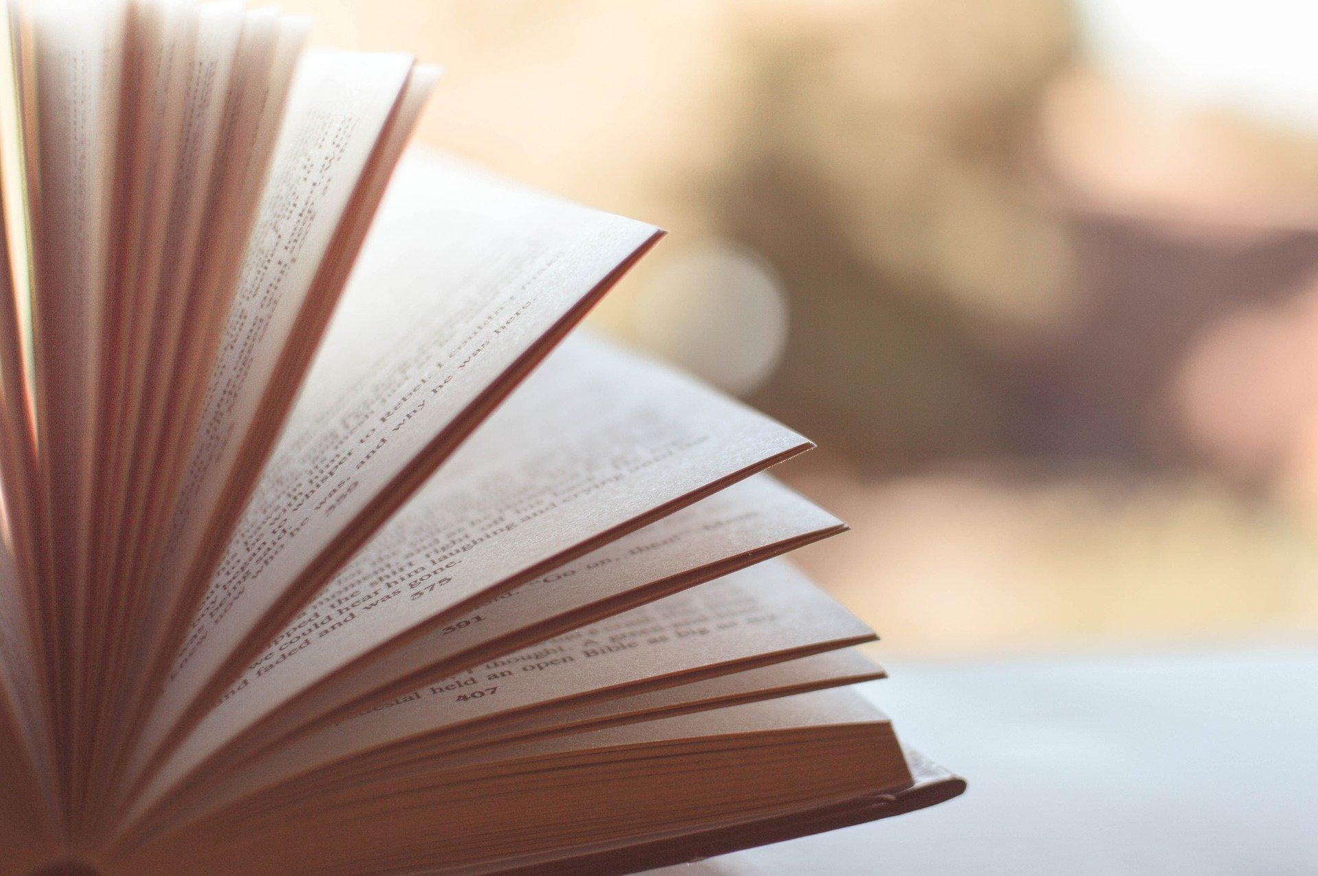 Treffpunkt Literatur - saksankielinen luku- ja keskustelupiiri