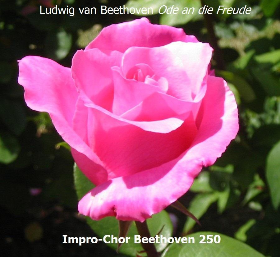 Improkuoro Beethoven 250 - harjoitus I