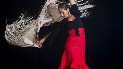 Flamencoseminaari