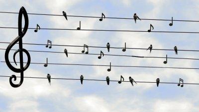 Lauluoppilaiden kevätkonsertti