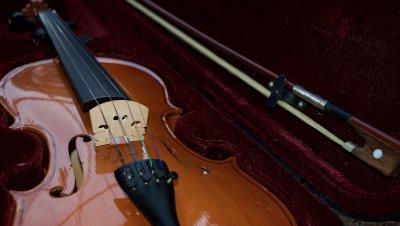 Hetki viulismia