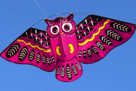 Classic 3D Owl Kite Ids Toys Fun Outdoor Flying Activity Game Children With Tail
