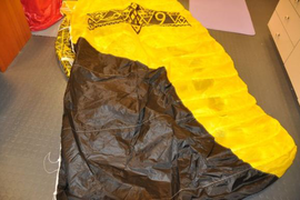 Kite is in very good condition, crispy. Low usage  ...