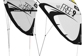 Core Free Kite only white/black Testkites USED *VOM CORE PRO SHOP FEHMARN*