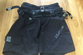 Dakine harness shorts