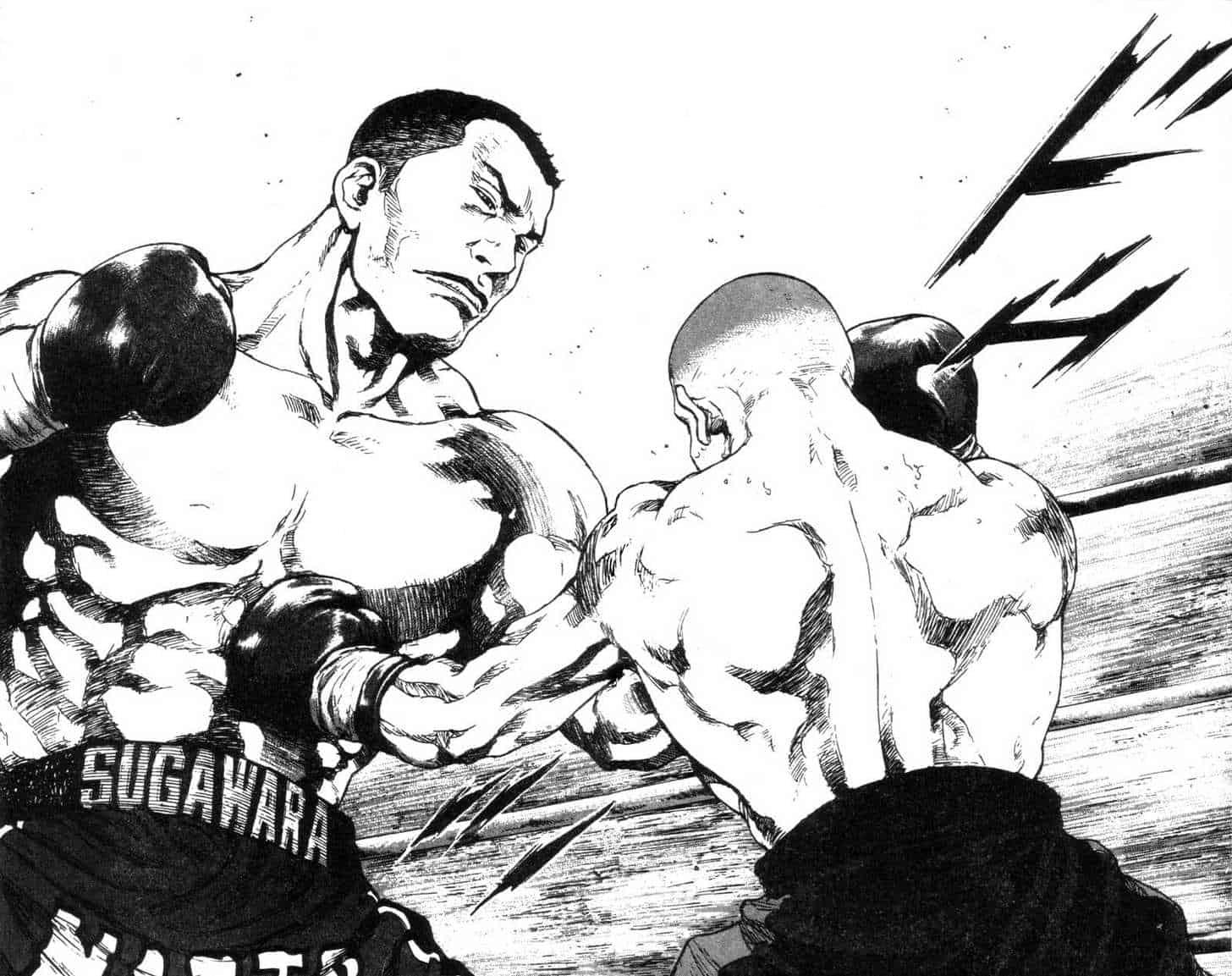 Shamo: le MMA & il Grappling 2