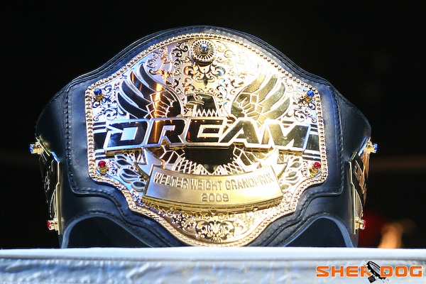 Dream & K-1 si dividono, KamiPro chiude 1