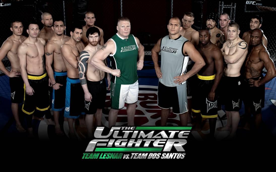 The Ultimate Fighter in Italia 1