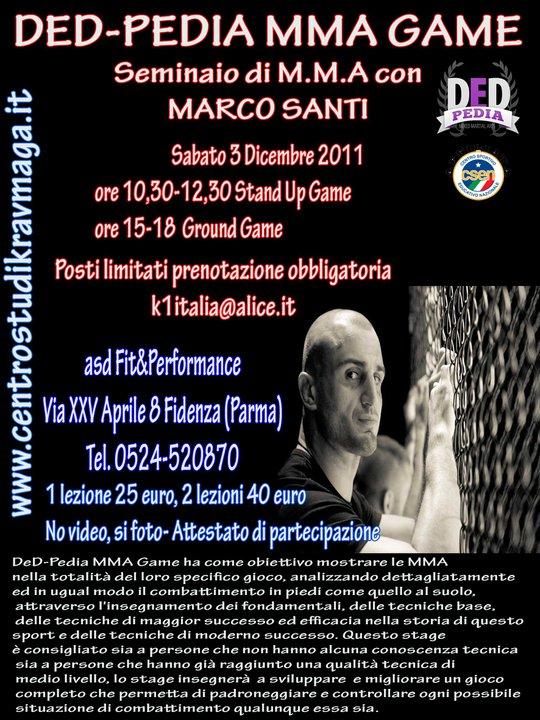 Seminario di MMA con marco Santi 1