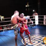 Fight Fever 4: risultati 8