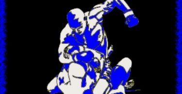 MMA -italy