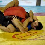 Campionato Mondiale 2011 di Grappling e di MMA 14