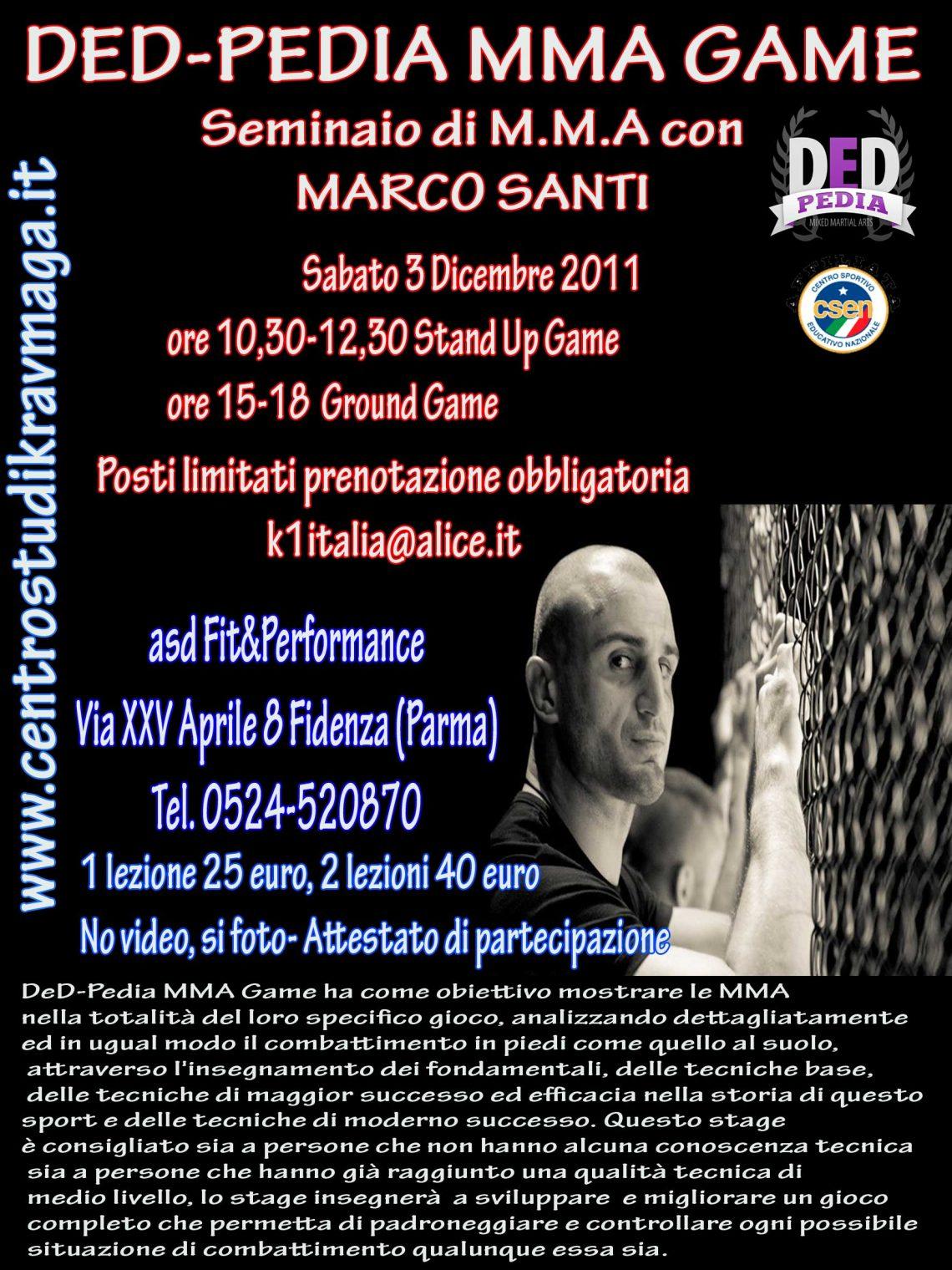Stage di MMA con Marco Santi 1