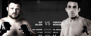 UFC 143 Fight Analisys: Fabricio Werdum vs Roy Nelson 2
