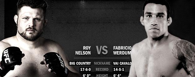 UFC 143 Fight Analisys: Fabricio Werdum vs Roy Nelson 1