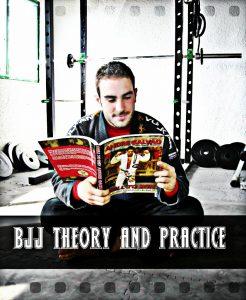 Teoria, pratica e i livelli del Jiu-Jitsu 2