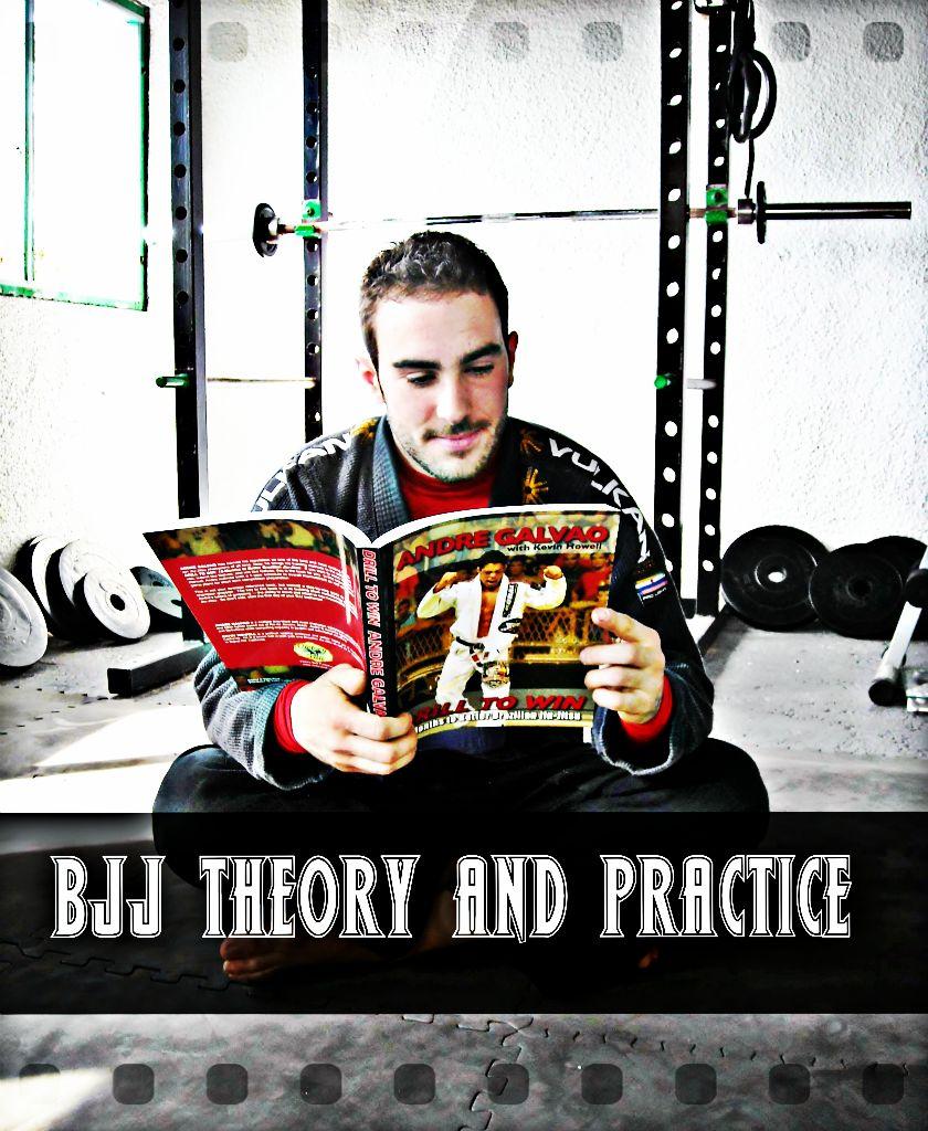 Teoria, pratica e i livelli del Jiu-Jitsu 1