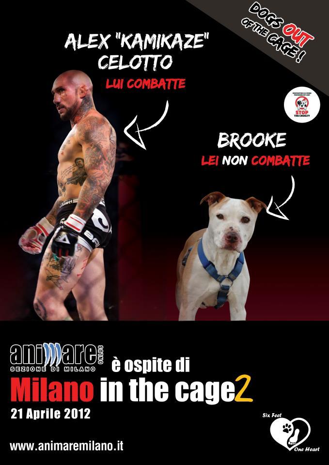 Milano in the Cage: tutte le interviste di ItalianMMA.it 1