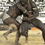 Laamb: lotta senegalese 2