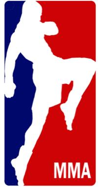 MMA in USA: Qualche numero 1