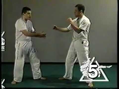 Ralph Gracie ci dimostra che il Gracie Jiu-Jitsu è stato creato per il Valetudo 1