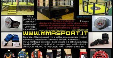 Affittare gabbie da MMA 6