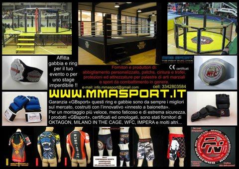 Affittare gabbie da MMA 1