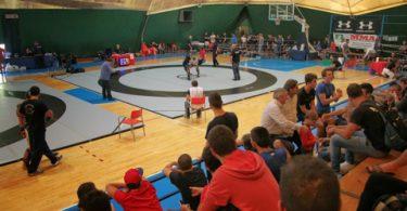La III Coppa Italia di Mixed Martial Arts (articolo di Max de Michelis) 1