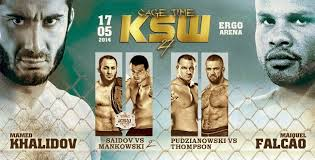 Fight Card di Ksw 27 - Cage Time. 1