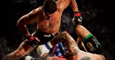 Nazionale Italiana di MMA