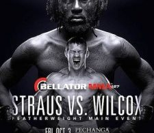 Risultati Bellator 127: Wilcox vs. Straus 5