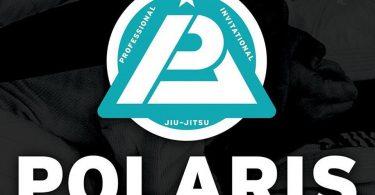 Polaris Pro 4 12
