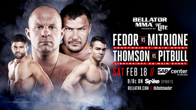 Risultati e highlights Bellator 172: Fedor vs Mitrione (update) 1