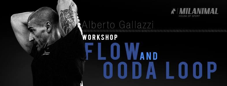 Workshop - Flow and OODA loop (Milano) 1