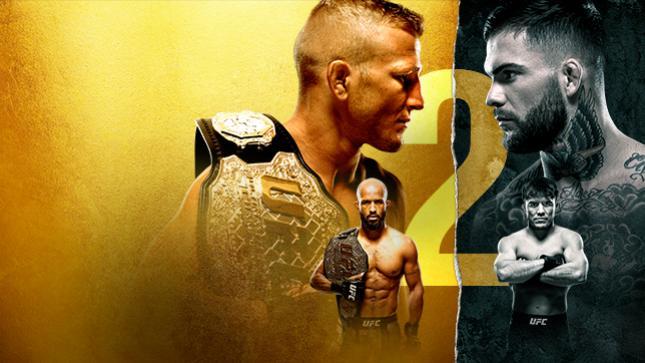 RISULTATI UFC 227 1