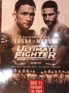 The Ultimate Fighter: Team McGregor vs. Team Faber Finale 2