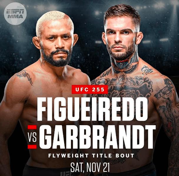 UFC 255:  Deiveson Figueiredo vs Cody Garbrandt 1