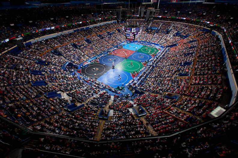Inchiesta: La Crisi delle MMA Italiane e la Necessità di allenarsi negli USA, cosa ci dicono i numeri 11