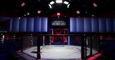 Inchiesta: La Crisi delle MMA Italiane e la Necessità di allenarsi negli USA, cosa ci dicono i numeri 8